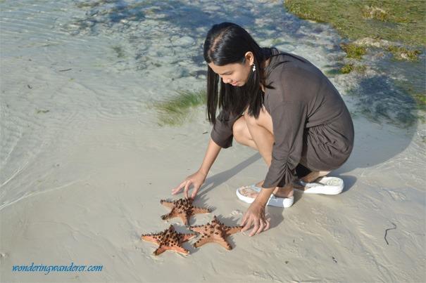Coco Grove Beach Resort Marine Sanctuary
