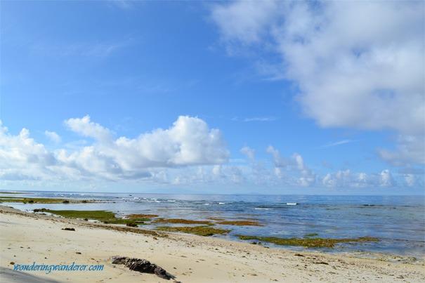 Coco Grove Beach Resort Marine Sactuary