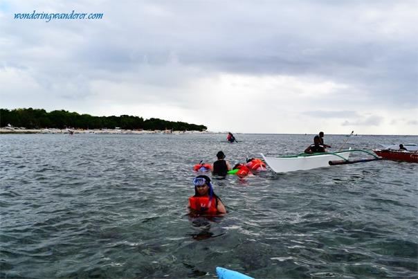 Balicasag Island Snorkeling Boats