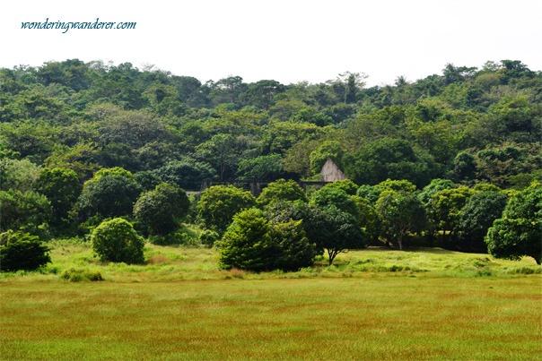 House Ruins in Corregidor Island