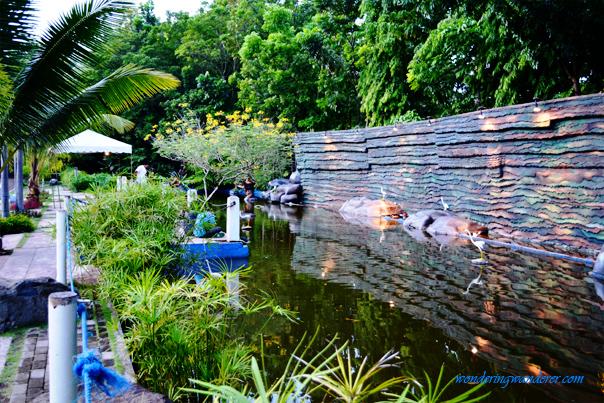 People's Park Koi Pond - Davao City
