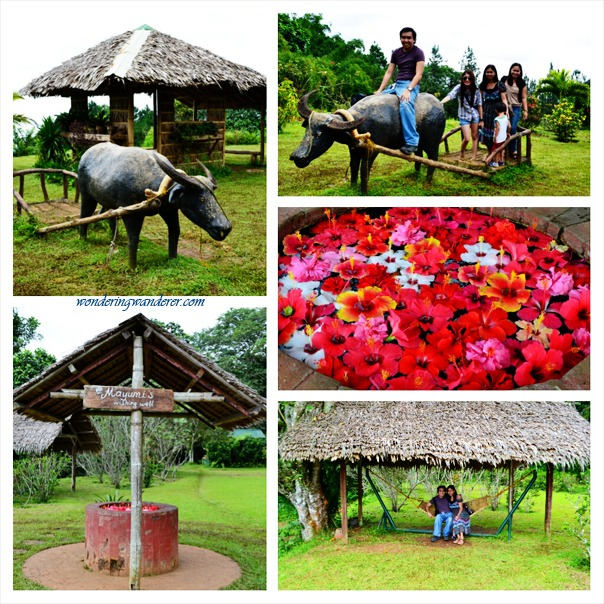 Eden Nature Park Carabao - Davao City