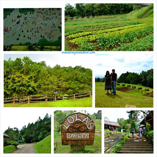Eden Nature Park's Lola's Garden - Davao City