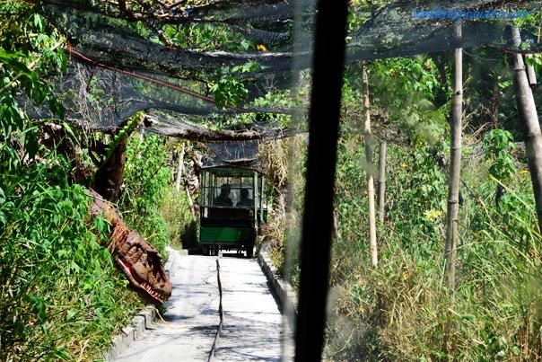 Dinosaurs Island - Clark, Pampanga Dino on watch