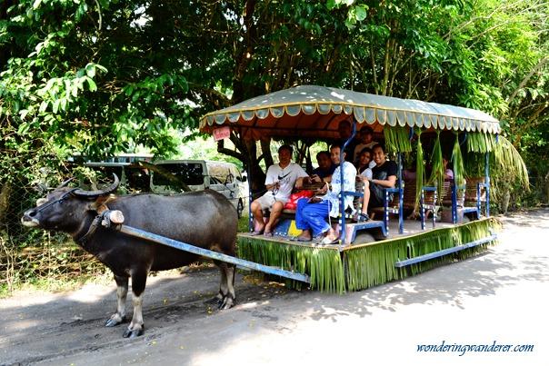 Villa Escudero's Water Buffalo Wagon