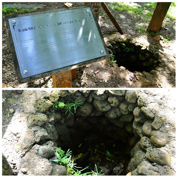 Burrow in Ermita Hill