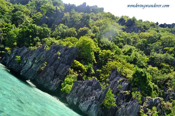 Simizu Island's Karsts and Trees