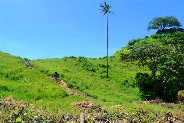 Hill stairs at Nacpan Beach