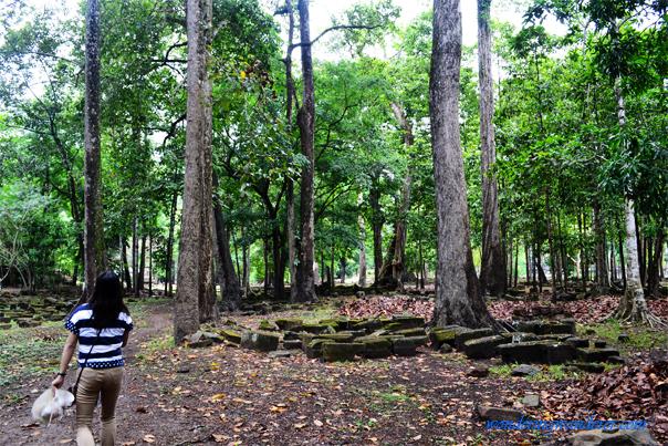 Wat Preah Ngok in the woods - Siem Reap