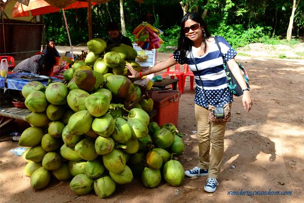 Coconuts at Ta Keo Temple