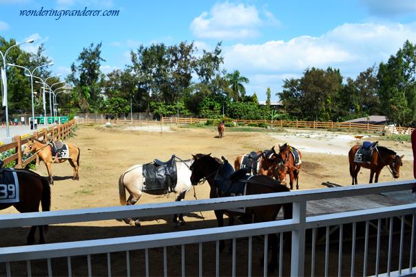 Horse-back riding at Sky Ranch - Sky fun Amusement Park - Riding Loop