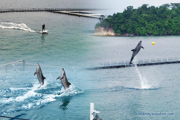 Ocean Adventure - Subic Bay Freeport Zone Philippines