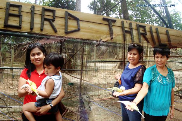 Bird Thrill - Zoobic Safari - Subic Bay Freeport Zone