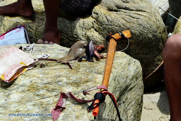 Improvised harpoon at Puerto Galera