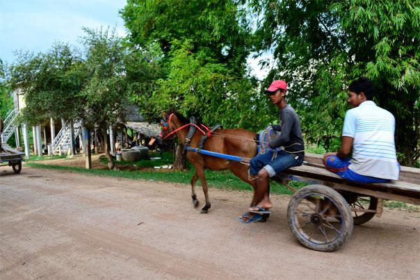 Horse carriage in silk island