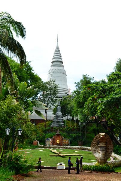 Giant cobra - Phnom Penh